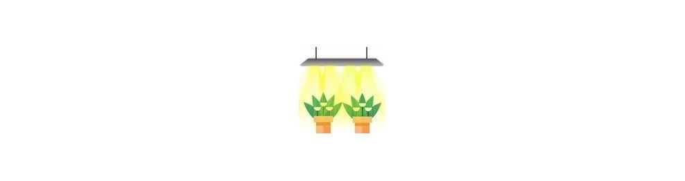 Barres LED
