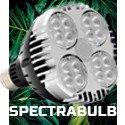 SpectraBULB