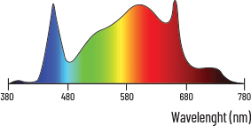 spectre zeus 600w