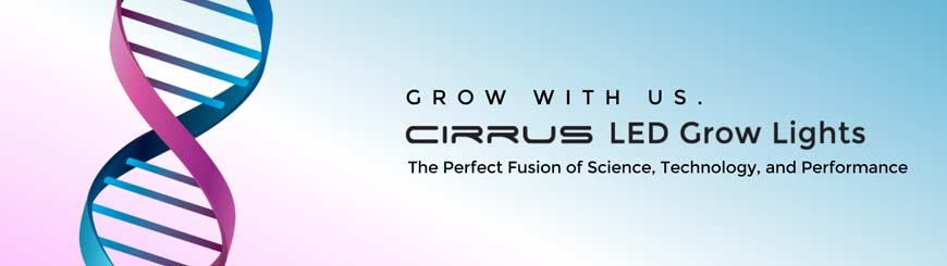 LED horticole Cirrus led systems