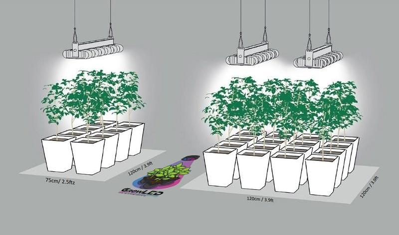 led grow light prima klima