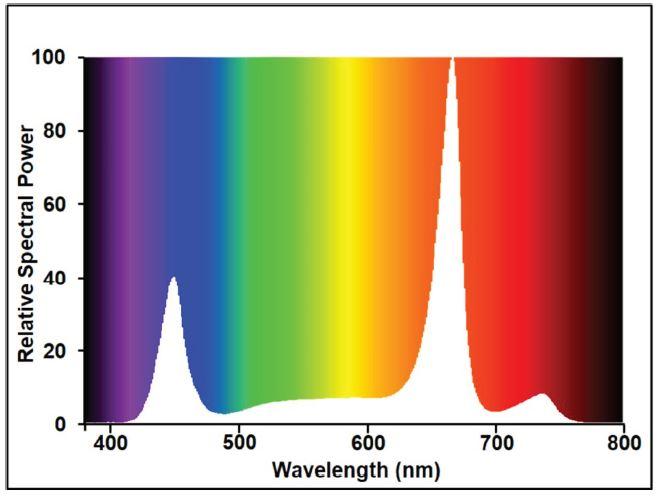 spectre gro-lux-linear-240w