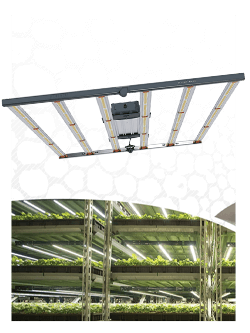 led fluence spydr 2x horticole culture
