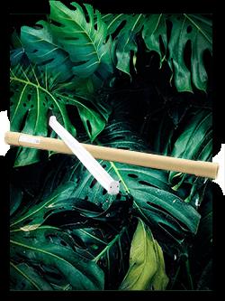barre horticole led boutures jeunes plantes semis graines eclairages