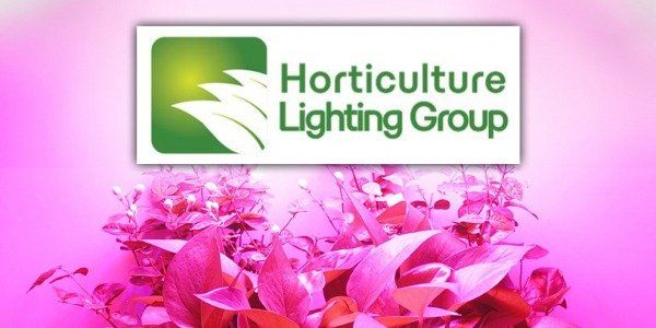 Horticulture Lighting Group : La gamme HLG débarque sur GrowLED