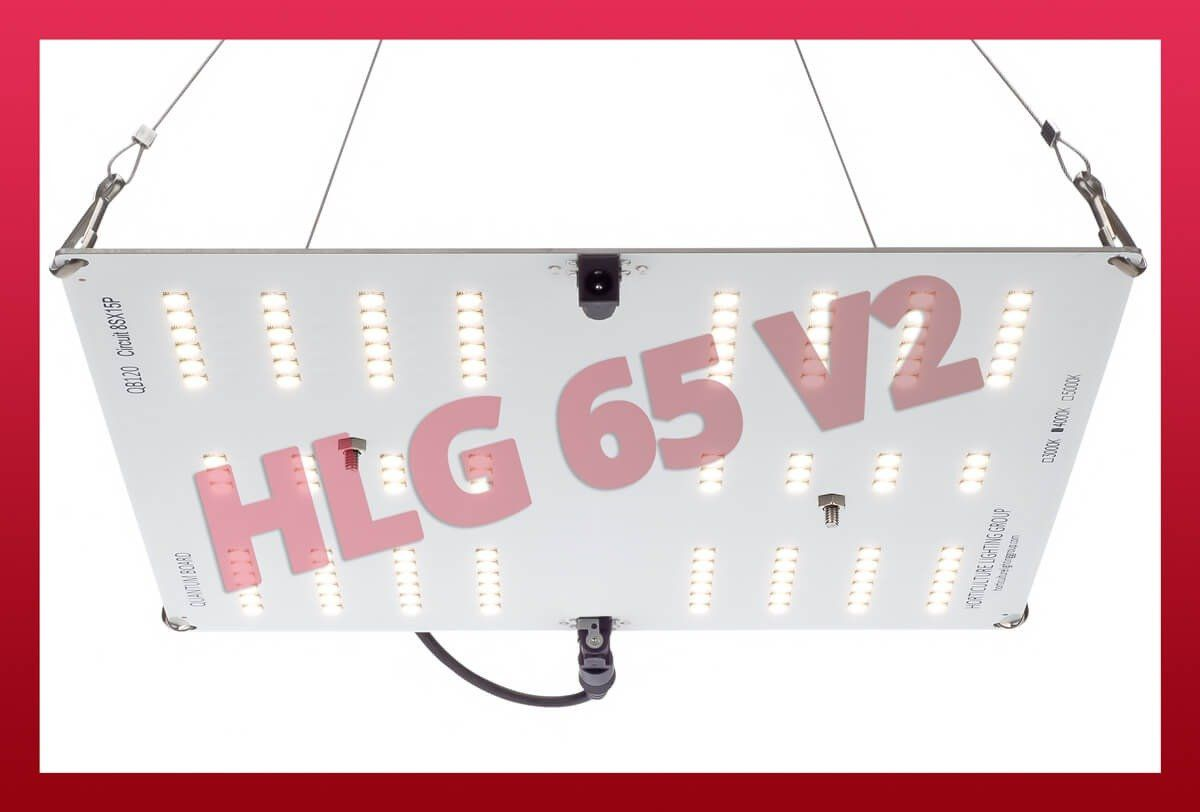 HLG 65 V2 - Lampe Horticole LED - Horticulture Lighting Group